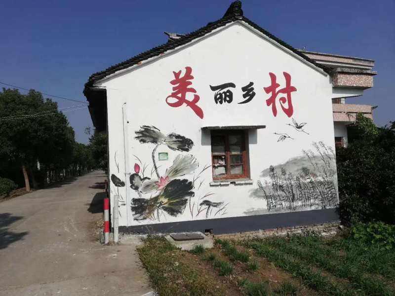 整栋墙体绘画